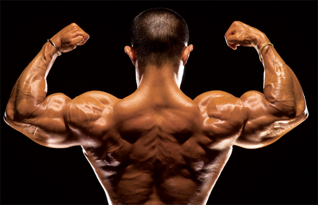 10 Training Tips for Gaining Lean Muscle