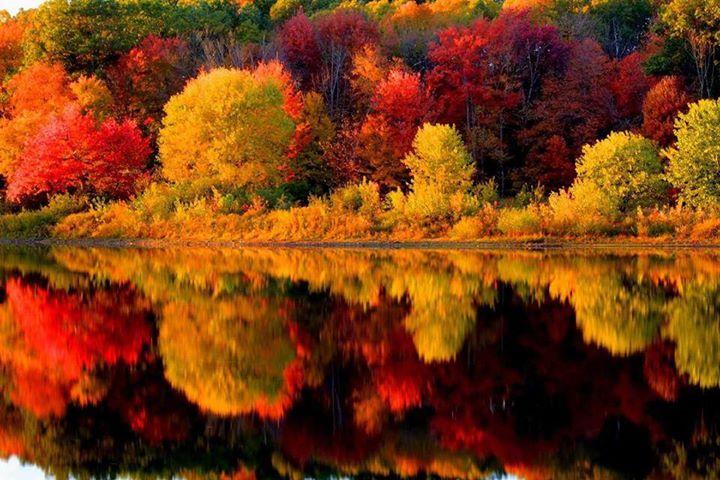 Autumn (12)
