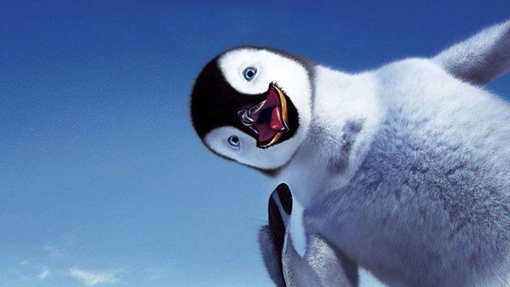 Baby-Penguine (7)
