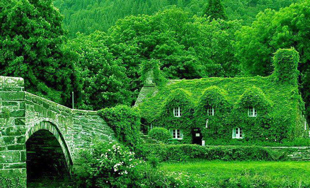 Beautiful Cottages in the Lap of Nature (18 Photos)