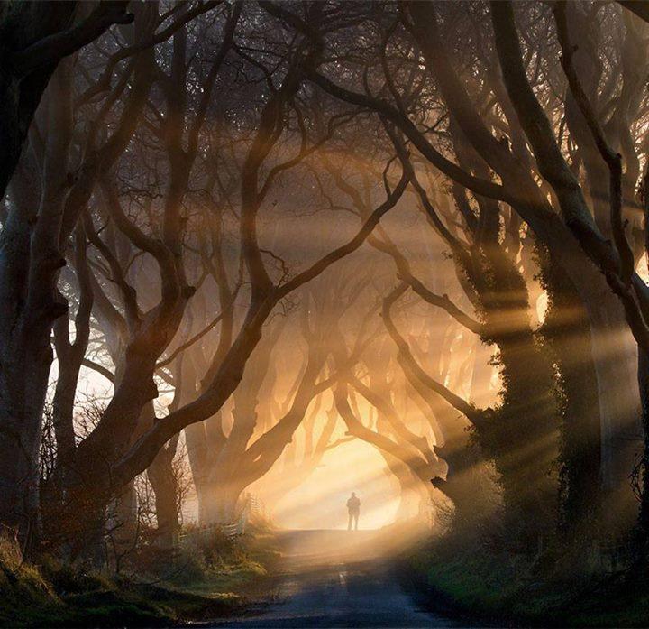 Magical-Paths (10)