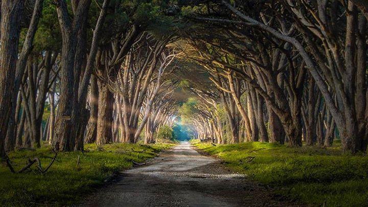 Magical-Paths (12)