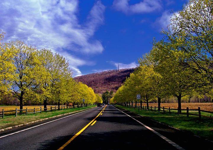 Amazing-Roads (18)
