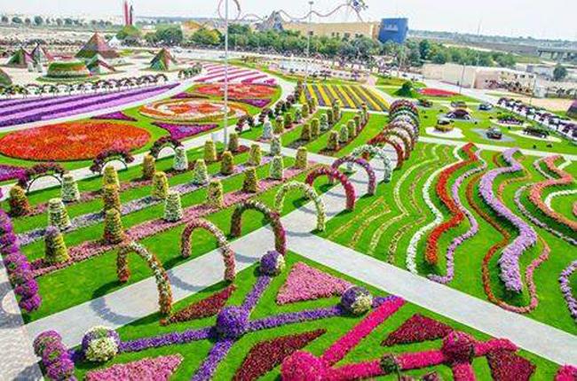 Dubai-Miracle-Garden (5)