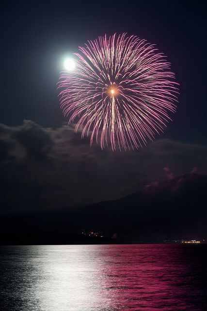 Firework (13)