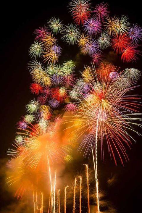 Firework (20)