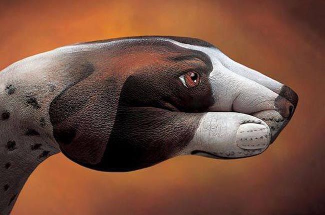 Hands-Animals-Art (1)