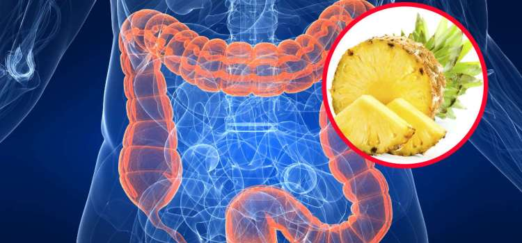 The Pineapple Enzyme Bromelain, Can Use to Prevent Cancer