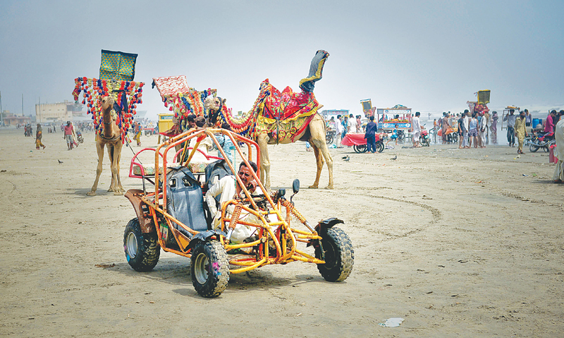 11- Buggy ride, camel ride, and horse riding at Clifton Beach, Karachi