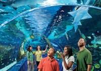 The Ten Best Zoos in the World