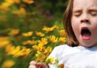 Hay Fever (Seasonal Allergic Rhinitis)