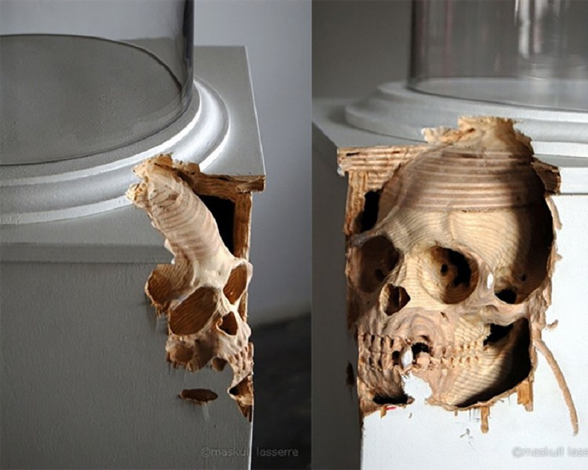 Skull carved in plywood plinth, Bell jar. 001