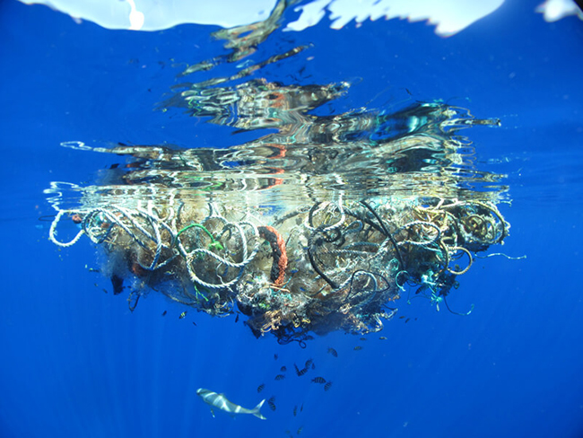 Accumulation of waste in the ocean, the beginning of an island