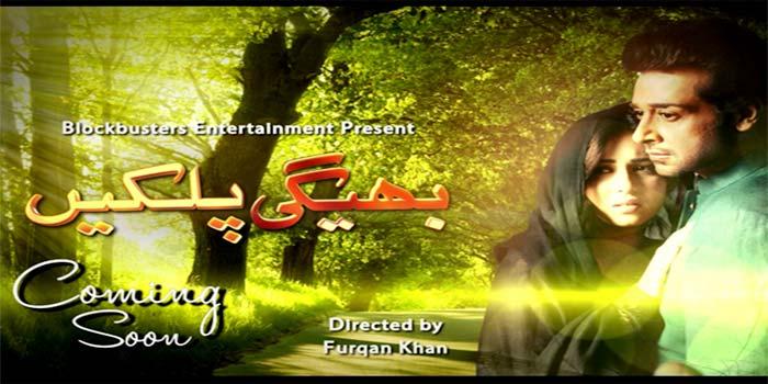 Bheegi-Palkein-Pakistani-Drama