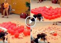Fastest Time to POP 100 Balloons by a DOG – Video