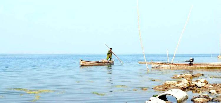 Manchar Lake 5