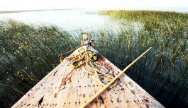 Manchar Lake