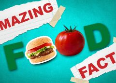 Some Foods Facts